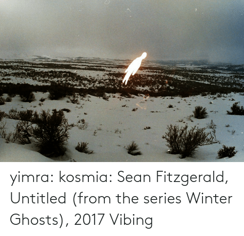 Untitled: yimra: kosmia:  Sean Fitzgerald, Untitled (from the series Winter Ghosts), 2017   Vibing