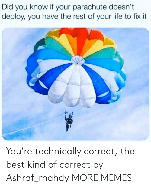 Kind: You're technically correct, the best kind of correct by Ashraf_mahdy MORE MEMES
