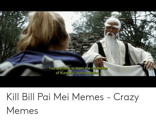 pai mei: You are here to learn the mysteries  of Kung Fu, not linguistics