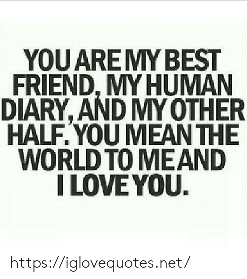 Best Friend, Love, and I Love You: YOU ARE MY BEST  FRIEND, MY HUMAN  DIARY, AND MY OTHER  HALF.YOU MEAN THE  WORLD TO MEAND  I LOVE YOU. https://iglovequotes.net/
