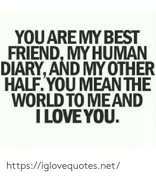 Best Friend, Love, and I Love You: YOU ARE MY BEST  FRIEND,MY HUMAN  DIARY, AND MY OTHER  HALF.YOU MEAN THE  WORLD TO MEAND  I LOVE YOU. https://iglovequotes.net/