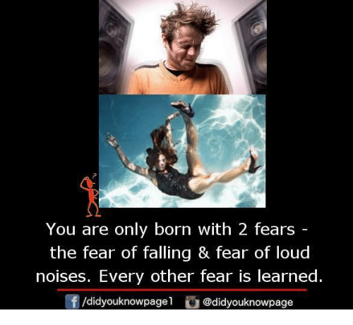 Memes, 🤖, and Noise: You are only born with 2 fears  the fear of falling & fear of loud  noises. Every other fear is learned.  /didyouknowpagel  @didyouknowpage