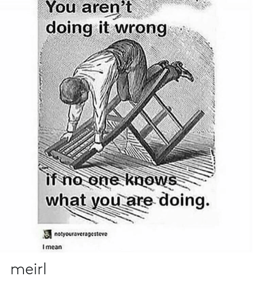 Doing It Wrong: You  aren't  doing it wrong  if no one knows  what you are doing.  notyouravcragesteve  I mean meirl