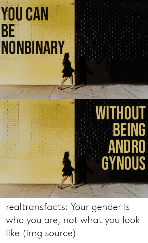 Men Are: YOU CAN  BE  NONBINARY   WITHOUT  BEING  ANDRO  GYNOUS realtransfacts: Your gender is who you are, not what you look like   (img source)