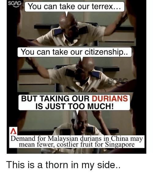 My Sides: You can take our terrex  You can take our citizenship.  BUT TAKING OUR  DURIANS  IS JUST TOO MUCH!  Demand for Malaysian durians in China may  mean fewer, costlier fruit for Singapore This is a thorn in my side..