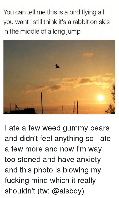 birds flying: You can tell me this is a bird flying all  you want l still think it's a rabbit on skis  in the middle of a long jump I ate a few weed gummy bears and didn't feel anything so I ate a few more and now I'm way too stoned and have anxiety and this photo is blowing my fucking mind which it really shouldn't (tw: @alsboy)