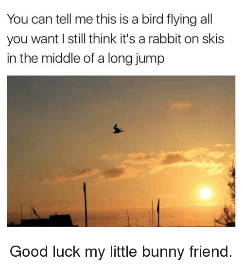 birds flying: You can tell me this is a bird flying all  you want I still think it's a rabbit on skis  in the middle of a long jump Good luck my little bunny friend.