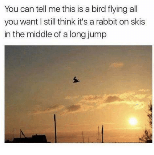 birds flying: You can tell me this is a bird flying all  you want still think it's a rabbit on skis  in the middle of a long jump