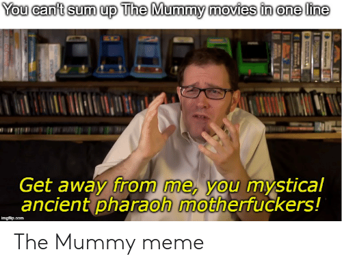 The Mummy Meme: You canft sum up The Mummy movies in one line  Get away from me, you mystical  ancient pharaoh motherfuckers!  imgflip.com  Cisins The Mummy meme