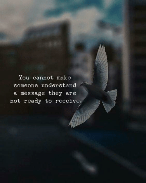 Make, They, and You: You cannot make  someone understand  a message they are  not ready to receive.
