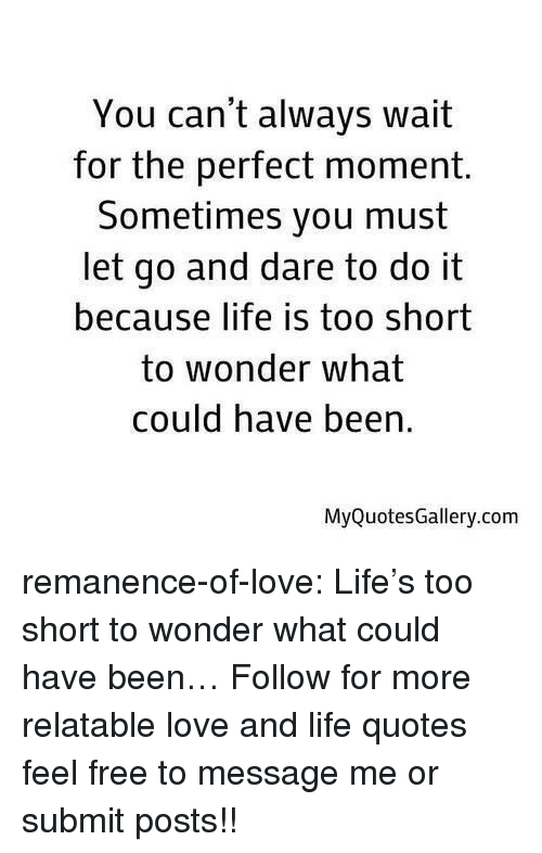 Life Is Too Short To: You can't always wait  for the perfect moment.  Sometimes you must  let go and dare to do it  because life is too short  to wonder what  could have been  MyQuotesGallery.com remanence-of-love:  Life's too short to wonder what could have been…  Follow for more relatable love and life quotes     feel free to message me or submit posts!!