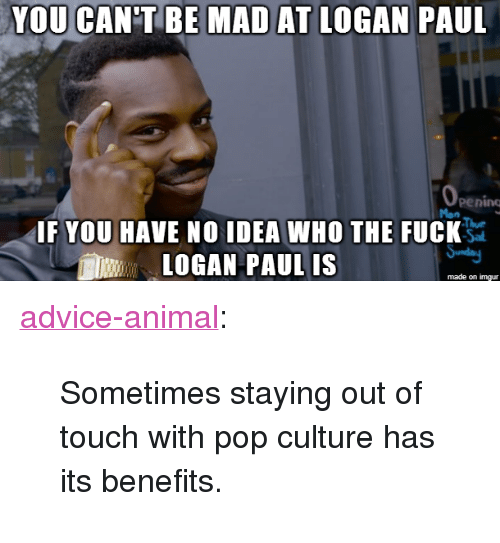 """pop culture: YOU CAN'T BE MAD AT LOGAN PAUL  pening  IF YOU HAVE NO IDEA WHO THE FUCK  LOGAN PAUL IS  made on imgur <p><a href=""""http://advice-animal.tumblr.com/post/169279120673/sometimes-staying-out-of-touch-with-pop-culture"""" class=""""tumblr_blog"""">advice-animal</a>:</p>  <blockquote><p>Sometimes staying out of touch with pop culture has its benefits.</p></blockquote>"""