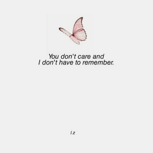 you dont care: You don't care and  I don't have to remember.  I.z