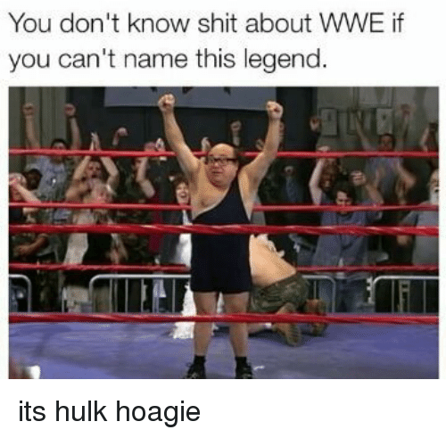 Legend, Legends, and Name: You don't know shit about wwE if  you can't name this legend. its hulk hoagie