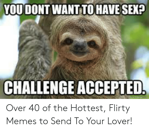 I Want Sex Meme: YOU DONT WANT TOHAVESEX?  CHALLENGE ACCEPTED Over 40 of the Hottest, Flirty Memes to Send To Your Lover!