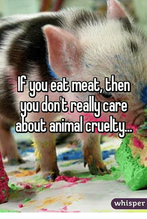 eating meat: you eat meat then  you dont  care  about anima crueltu  whisper