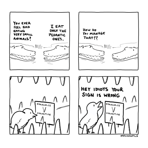Animals, Bad, and How: You EVER  I EAT  ONLY THE  PEDANTIC  ONES  FEEL BAD  EATING  VERY SMALL  ANIMALS?  How Do  You MANAGE  THAT??  V  HEY IDIOTS YouR  SIGN IS WRONG  STALAGMITE  V  STALAGMITE  V.  STALACTITE  STALACTITE  NATHANWPYLE