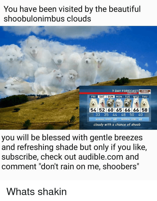 """Børk: You have been visited by the beautiful  shoobulonimbus clouds  7 DAY FORECAST  BORK TOWN  WARNING  SAT SUN MON TUE WED THU  FRI  54 52 60 65 66 66 58  33 35 44 48 50 40  NORMAL HIG  60 NORMAL Low: 40  cloudy with a chance of shoob  you Will be blessed with gentle breezes  and refreshing shade but only if you like,  subscribe, check out audible.com and  comment """"don't rain on me, shoobers"""" Whats shakin"""