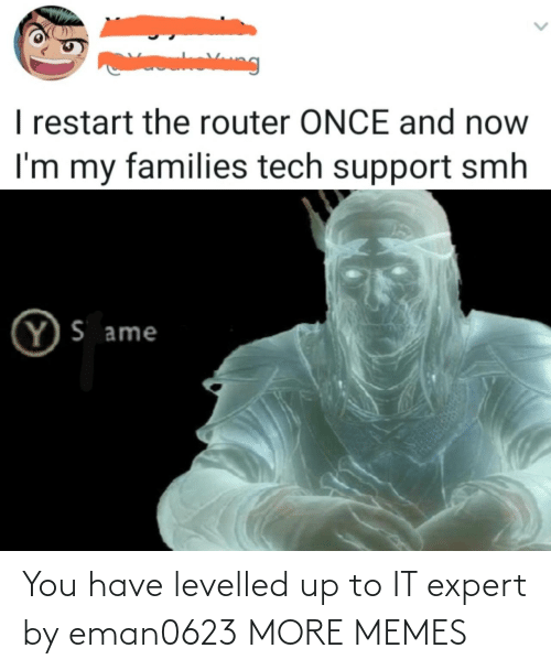 Expert: You have levelled up to IT expert by eman0623 MORE MEMES