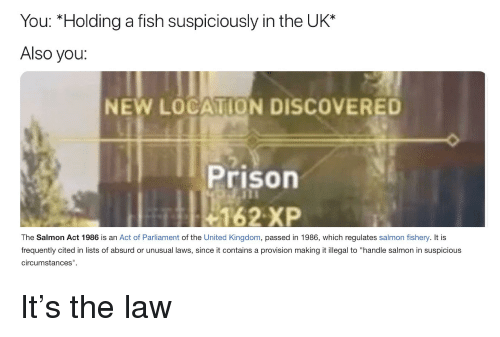 "Reddit, Prison, and Fish: You: ""Holding a fish suspiciously in the UK*  Also you:  NEW LOCATION DISCOVERED  Prison  162 XP  The Salmon Act 1986 is an Act of Parliament of the United Kingdom, passed in 1986, which regulates salmon fishery. It is  frequently cited in lists of absurd or unusual laws, since it contains a provision making it illegal to ""handle salmon in suspicious  circumstances"
