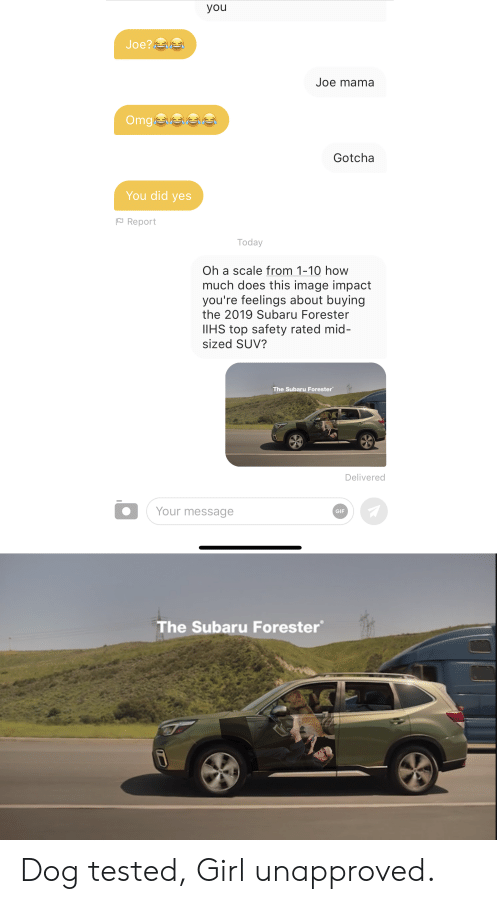 Gif, Omg, and Girl: you  Joe?  Joe mama  Omg e  Gotcha  You did yes  Report  Today  Oh a scale from 1-10 how  much does this image impact  you're feelings about buying  the 2019 Subaru Forester  IIHS top safety rated mid-  sized SUV?  The Subaru Forester  Delivered  Your message  GIF  The Subaru Forester Dog tested, Girl unapproved.