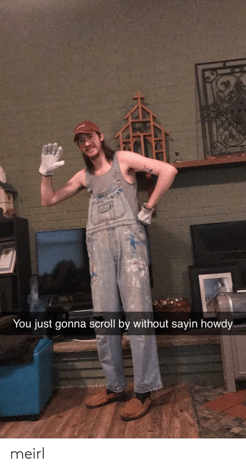 MeIRL, You, and Howdy: You just gonna scroll by without sayin howdy meirl