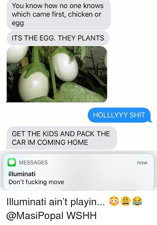 Im Coming Home: You know how no one knows  which came first, chicken or  egg  ITS THE EGG. THEY PLANTS  HOLLLYYY SHIT  GET THE KIDS AND PACK THE  CAR IM COMING HOME  MESSAGES  illuminati  Don't fucking move  now Illuminati ain't playin... 😳😩😂 @MasiPopal WSHH