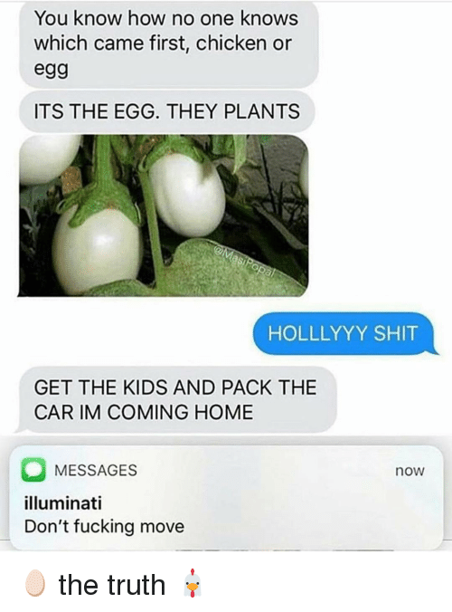 Im Coming Home: You know how no one knows  which came first, chicken or  egg  ITS THE EGG. THEY PLANTS  HOLLLYYY SHIT  GET THE KIDS AND PACK THE  CAR IM COMING HOME  MESSAGES  illuminati  Don't fucking move  now 🥚 the truth 🐔