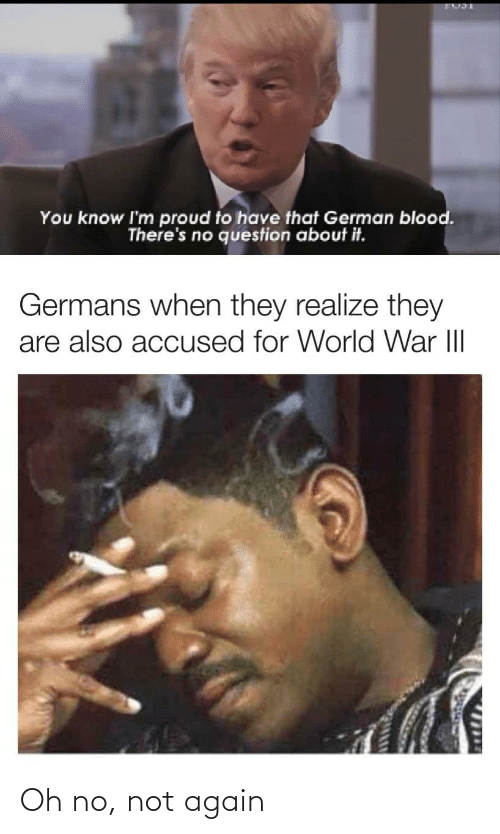 Accused: You know I'm proud to have that German blood.  There's no question about it.  Germans when they realize they  are also accused for World War III  1714 Oh no, not again