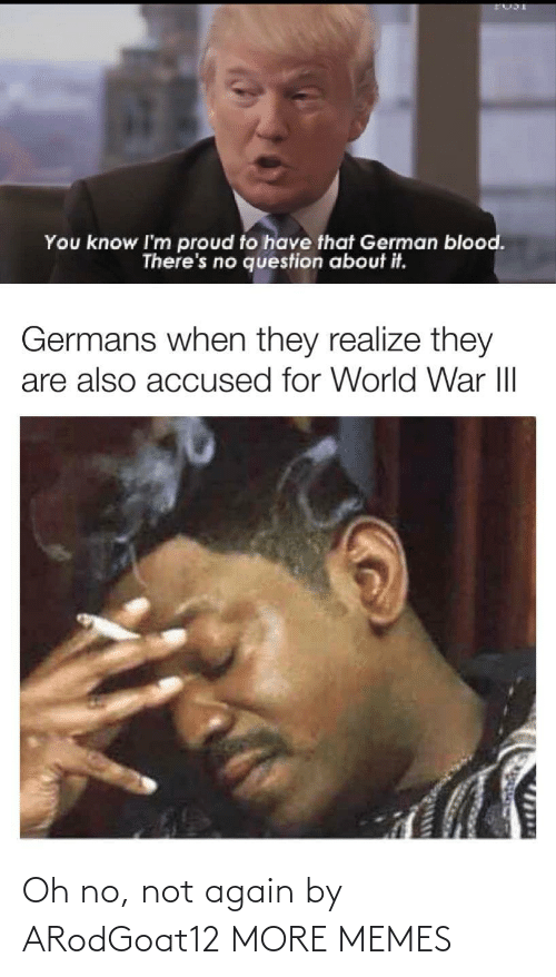 Accused: You know I'm proud to have that German blood.  There's no question about it.  Germans when they realize they  are also accused for World War III  1714 Oh no, not again by ARodGoat12 MORE MEMES