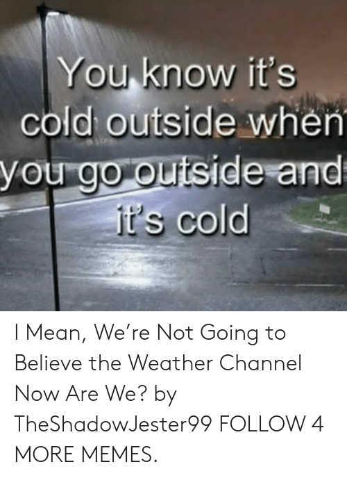 Weather Channel: You know it's  cold outside when  you go outside and  it's cold I Mean, We're Not Going to Believe the Weather Channel Now Are We? by TheShadowJester99 FOLLOW 4 MORE MEMES.