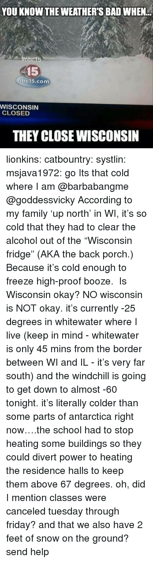 "Send Help: YOU KNOW THE WEATHER'S BAD WHEN  15  bc15.com  WISCONSIN  CLOSED  THEY CLOSE WISCONSIN lionkins:  catbountry:  systlin:  msjava1972:  go Its that cold where I am @barbabangme @goddessvicky  According to my family 'up north' in WI, it's so cold that they had to clear the alcohol out of the ""Wisconsin fridge"" (AKA the back porch.) Because it's cold enough to freeze high-proof booze.   Is Wisconsin okay?  NO wisconsin is NOT okay. it's currently -25 degrees in whitewater where I live (keep in mind - whitewater is only 45 mins from the border between WI and IL - it's very far south) and the windchill is going to get down to almost -60 tonight. it's literally colder than some parts of antarctica right now….the school had to stop heating some buildings so they could divert power to heating the residence halls to keep them above 67 degrees. oh, did I mention classes were canceled tuesday through friday? and that we also have 2 feet of snow on the ground?send help"