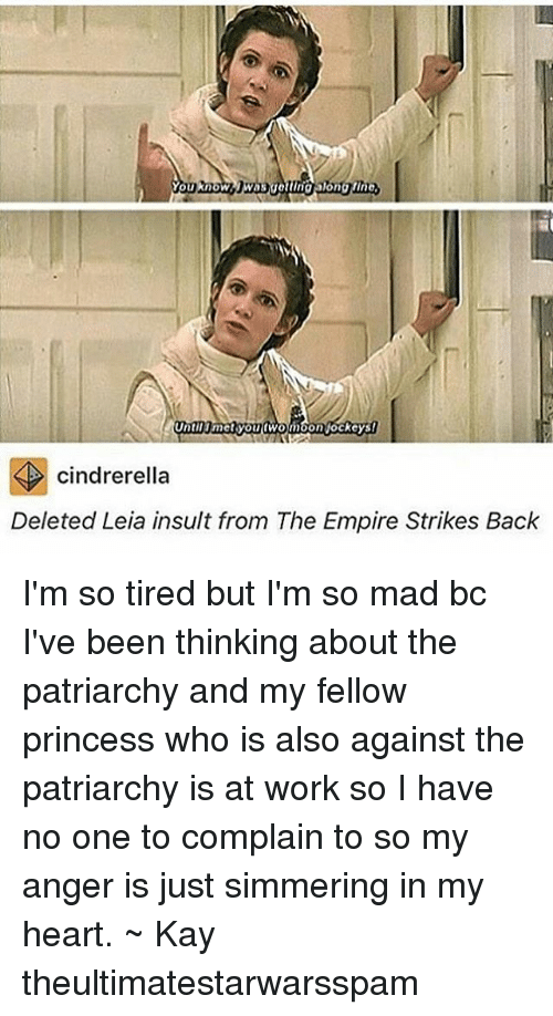 strike back: You know  Until met you fWon  on jockeys!  cindrerella  Deleted Leia insult from The Empire Strikes Back I'm so tired but I'm so mad bc I've been thinking about the patriarchy and my fellow princess who is also against the patriarchy is at work so I have no one to complain to so my anger is just simmering in my heart. ~ Kay theultimatestarwarsspam