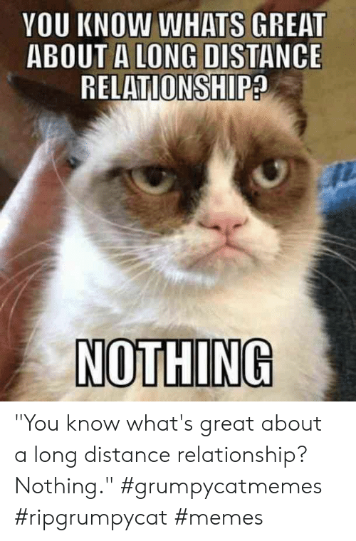 "Distance Relationship: YOU KNOW WHATS GREAT  ABOUT A LONG DISTANCE  RELATIONSHIP?  NOTHING ""You know what's great about a long distance relationship? Nothing."" #grumpycatmemes #ripgrumpycat #memes"