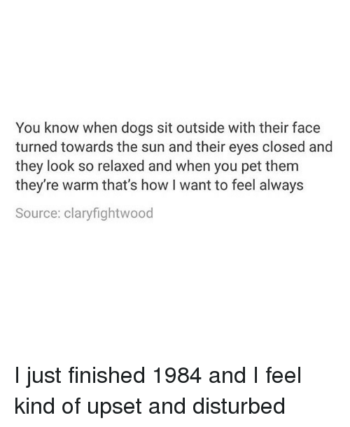 Upsetted: You know when dogs sit outside with their face  turned towards the sun and their eyes closed and  they look so relaxed and when you pet them  they re warm that's how I want to feel always  Source: claryfightwood I just finished 1984 and I feel kind of upset and disturbed