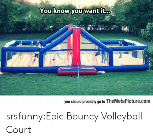 Tumblr, Blog, and Http: You know you want it..  you should probably go to TheMetaPicture.com srsfunny:Epic Bouncy Volleyball Court