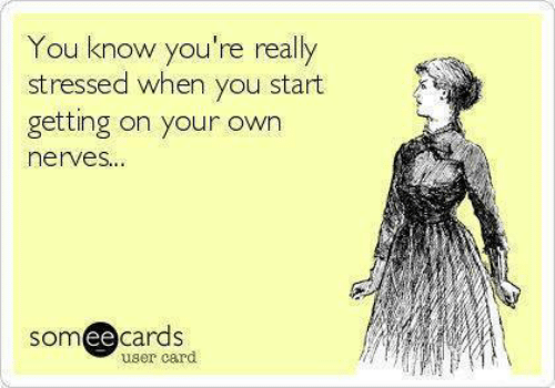 nerves: You know you're really  stressed when you start  getting on your own  nerves...  someecards  user card