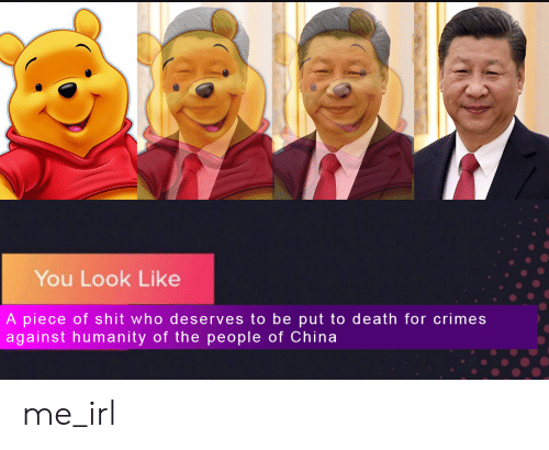 Shit, China, and Death: You Look Like  A piece of shit who deserves to be put to death for crimes  against humanity of the people of China me_irl