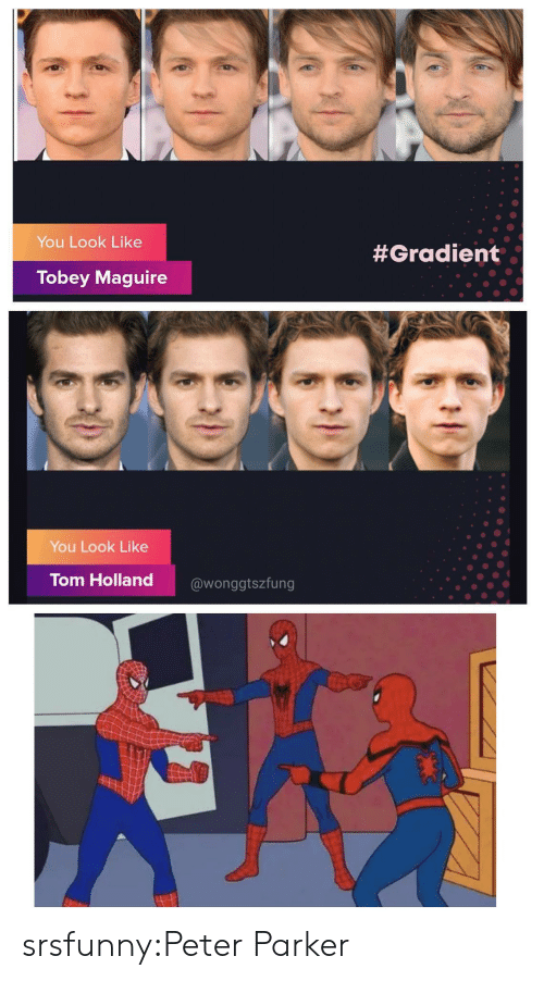 Tobey Maguire: You Look Like  #Gradient  Tobey Maguire  You Look Like  Tom Holland  @wonggtszfung srsfunny:Peter Parker