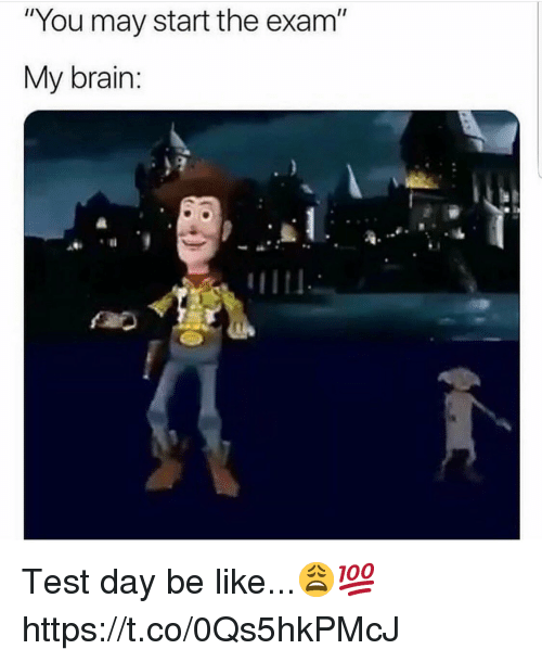"Be Like, Brain, and Test: ""You may start the exam""  My brain: Test day be like...😩💯 https://t.co/0Qs5hkPMcJ"