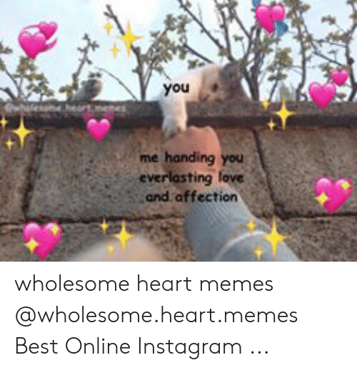 Heart Memes: you  me handing you  and affection wholesome heart memes @wholesome.heart.memes Best Online Instagram ...