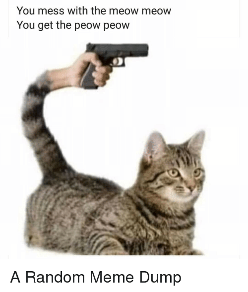 Meme, Random, and You: You mess with the meow meow  You get the peow peow A Random Meme Dump