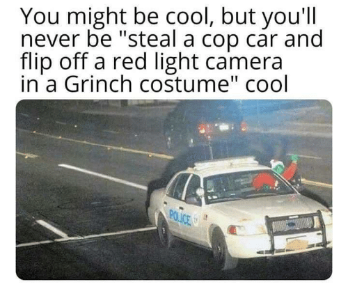"cop: You might be cool, but you'll  never be ""steal a cop car and  flip off a red light camera  in a Grinch costume"" cool  POLICE"