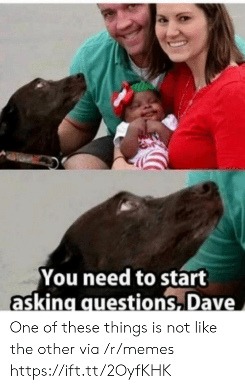 Memes, Asking, and Questions: You need to start  asking questions Dave One of these things is not like the other via /r/memes https://ift.tt/2OyfKHK