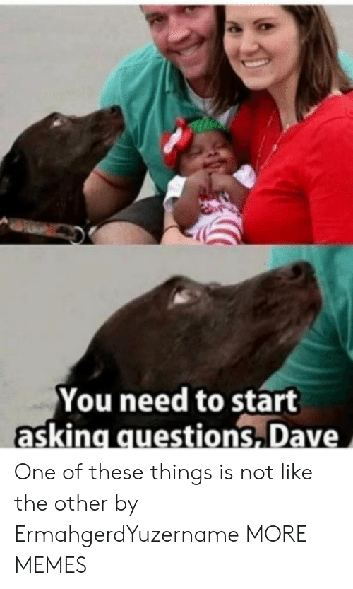 Dank, Memes, and Target: You need to start  asking questions Dave One of these things is not like the other by ErmahgerdYuzername MORE MEMES