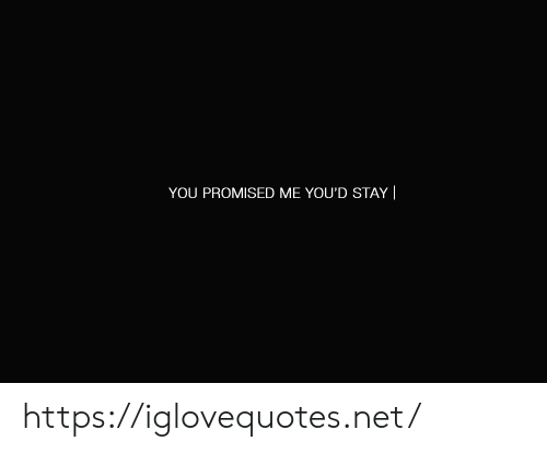 Promised: YOU PROMISED ME YOU'D STAY || https://iglovequotes.net/