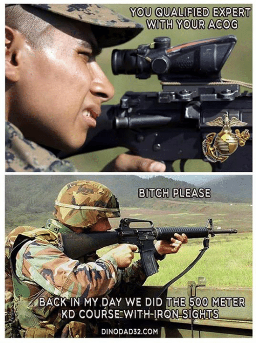 meter: YOU QUALIFIED  EXPERT  WITH YOUR ACOG  BITCH PLEASE  BACK IN MY DAY WE DID THE 500 METER  KD COURSE WITH-IRON SIGHTS  DINODAD32.COM