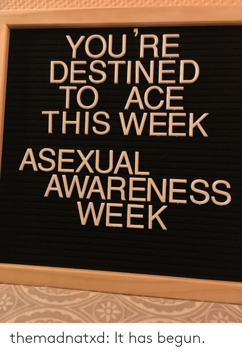 Begun: YOU 'RE  DESTINED  TO ACE  THIS WEEK  ASEXUAL  AWARENESS  WEEK themadnatxd:  It has begun.