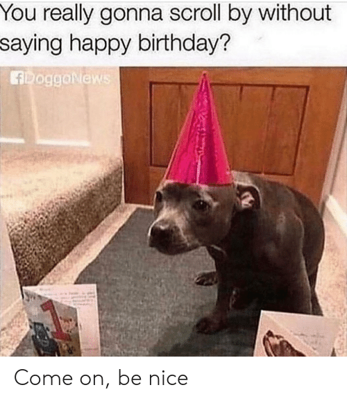 Birthday, Happy Birthday, and Happy: You really gonna scroll by without  saying happy birthday?  fRoggoNiews Come on, be nice