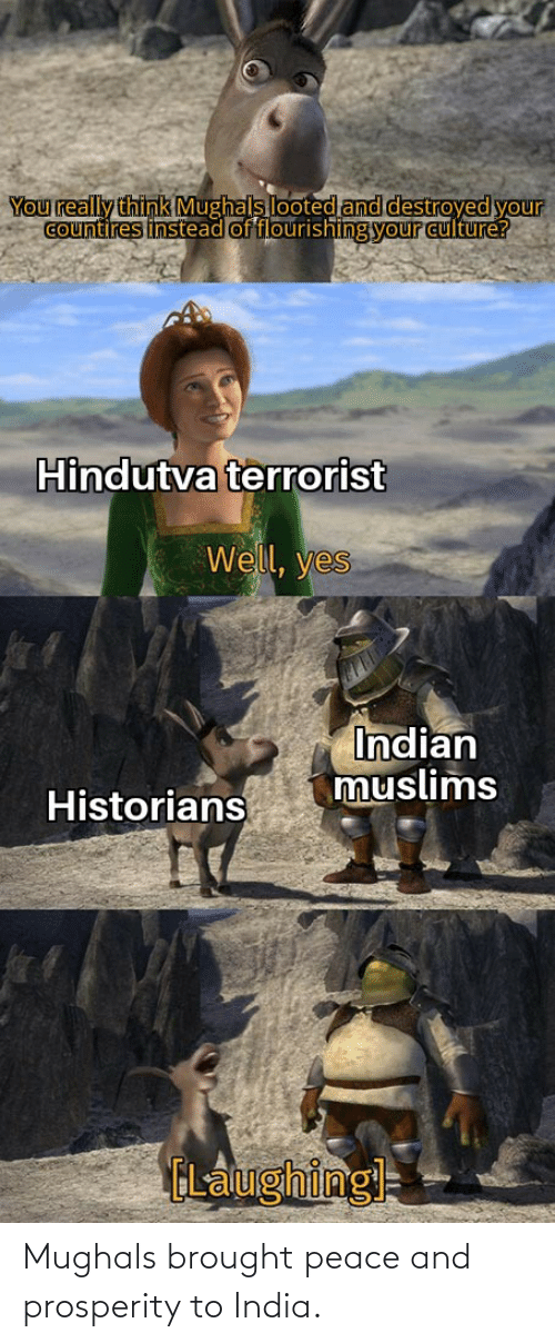 Yo, India, and Indian: You really think Mughals looted and destroyed yo  lyour  countires instead of flourishing your culture?  Hindutva terrorist  Well, yes  Indian  muslims  Historians  ELaughingl Mughals brought peace and prosperity to India.
